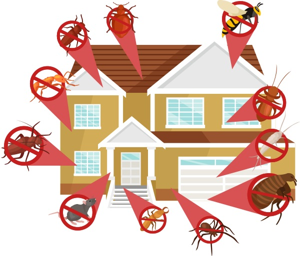 Affordable Exterminating Services